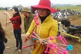 Dịch vụ lạ trên cánh đồng hoa hướng dương Nghệ An