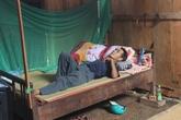 Vụ thảm sát 4 người ở Nghệ An: Nỗi đau của người may mắn thoát chết