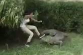 Trêu cá sấu, nữ du khách vật lộn điên cuồng để giữ mạng sống