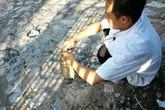 Người Hà Nội nô nức đi bắt cá mè trên sông... Tô Lịch