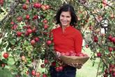 Vườn táo ruột đỏ độc đáo có giá gần 13 bảng Anh mỗi cây