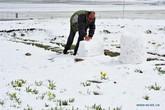 Chủm ảnh khó tin tuyết rơi giữa mùa hè ở Tân Cương