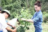 Hồ Ngọc Hà cùng bố cuốc đất, trồng cây ở quê
