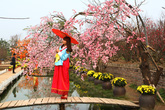 """""""Hốt bạc"""" từ vườn hoa giả đẹp như thật ở Nhật Tân"""