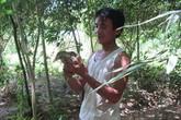 Anh nông dân nghèo từ chối 2 tỷ đồng để giữ vườn chim vì muốn dạy con tình yêu với thiên nhiên
