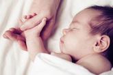"""""""Bàn tay của bố"""" – Biểu tượng mới của tình yêu gia đình"""