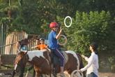 Điều trị cho trẻ khuyết tật, tự kỷ bằng cách học cưỡi ngựa