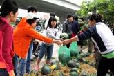 Mua dưa hấu ủng hộ nông dân Quảng Nam ở đâu?