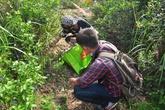 Hàng trăm người nhặt rác ở bán đảo Sơn Trà