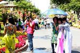 Người dân Sài Gòn ùn ùn đội nắng dạo đường hoa