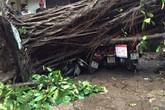 Đường phố Hà Nội tan hoang trong cơn giông lốc khủng khiếp
