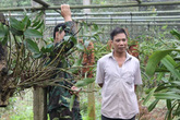 Thu 600 triệu đồng mỗi năm từ trồng lan