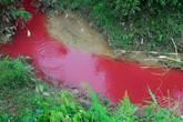 """Sự thật dòng suối nhuốm màu đỏ như """"máu"""" ở Điện Biên"""