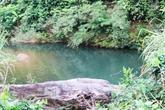 Một cán bộ rừng phòng hộ chết đuối khi tắm suối