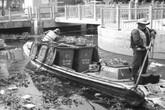"""TP Hồ Chí Minh: Rác xây dựng đang """"giết"""" môi trường sống"""