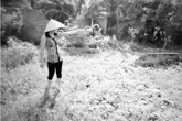 """Dự án Làng Việt Kiều (Hải Phòng): Dân phát hiện """"ngót"""" hàng trăm mét vuông đất khi nhận tiền đền bù"""