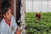 Những mặt hàng nông sản biến người nông dân thành triệu phú