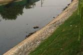 Hốt hoảng thấy xác người nổi trên sông Tô Lịch