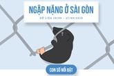 INFOGRAPHIC: 3 ngày mưa khủng khiếp ở Sài Gòn