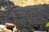 Điều tra vụ chất thải của Formosa được chôn lấp trong trang trại