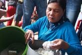 Không nên hoang mang trước thông tin hạt nhựa lẫn trong gạo