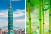 Kì lạ những tòa nhà nổi tiếng lấy cảm hứng từ cây cỏ