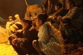 Sâp mỏ đá ở Thanh Hóa: Cả 8 người đã chết