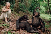 Người phụ nữ vĩ đại dành hơn 50 năm sống trong rừng với tinh tinh