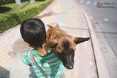 """Cậu bé bán vé số và chú chó què: """"Milu là em út của em, em thương nó lắm!"""