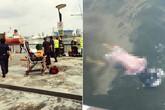 Đi săn Pokemon, phát hiện xác chết dưới hồ