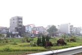 """Hà Nội: Sau vụ """"cắt cỏ tốn 700 tỷ"""", vườn hoa thành bãi chăn bò"""