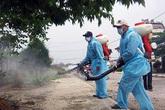 Nhiều địa phương hưởng ứng chiến dịch phòng chống bệnh do virus Zika