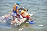 Phó Thủ tướng giao 3 Bộ tìm nguyên nhân cá chết