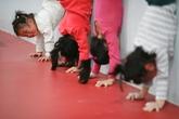 Trung tâm đào đạo VĐV nhí đầy máu và nước mắt ở Trung Quốc
