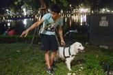 """Người Hà Nội vẫn """"vô tư"""" dắt chó không rọ mõm vào phố đi bộ"""