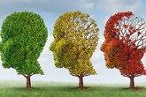 """7 kỹ năng giúp bạn có trí thông minh """"tuyệt đỉnh"""""""
