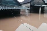 Cảnh báo lũ trên các sông từ Nghệ An đến Khánh Hòa