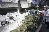Chú voi cô đơn tại Nhật Bản đã chết sau 67 năm sống cô độc