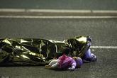 Thêm thông tin mới nhất trong vụ khủng bố đẫm máu bằng xe tải ở Pháp