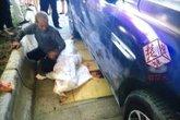Bé gái nằm tránh nóng ở lề đường bị ô tô hạng sang cán chết