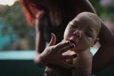 Vùng nào ở Việt Nam có nguy cơ bị virus Zika xâm nhập và lây lan cao nhất?
