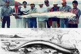 10 loài quái vật biển sâu kỳ lạ nhất thế giới