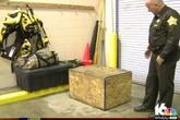 Mỹ: Bé gái 3 tuổi bị cha mẹ nhốt trong chiếc thùng gỗ chứa đầy côn trùng