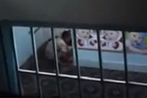 Phẫn nộ clip người mẹ già bị con gái chửi, dùng cán chổi đánh