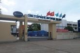 """TP Vinh, Nghệ An: Người dân khốn đốn vì bị """"vật lạ"""" tấn công"""