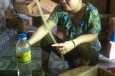 Phát hiện cơ sở chế dấm gạo từ axit pha nước lã
