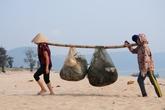 """Ngư dân Hà Tĩnh khốn cùng sau thảm họa cá biển """"bí ẩn"""" chết hàng loạt"""