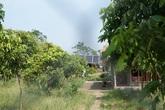 """Hồi âm bài viết """"Bãi giữa sông Hồng mọc lên một loạt nhà không phép"""": Giao UBND quận Tây Hồ kiểm tra, xử lý"""