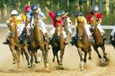 """Ông Dũng """"lò vôi"""" muốn mở trường đua ngựa hơn 2.000 tỷ đồng"""