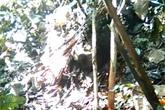 Xác thiếu nữ bên bìa rừng: Nghi can thừa nhận hiếp, bóp cổ nạn nhân đến chết
